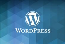 Wordpress Se Paise Kaise Kamaye