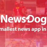 newsdog kya hai