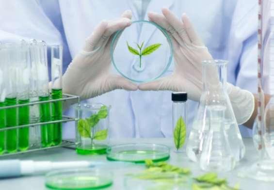 Biotechnology Me Career Kaise Banaye