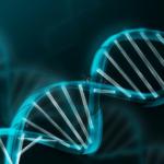 DNA Kya Hai